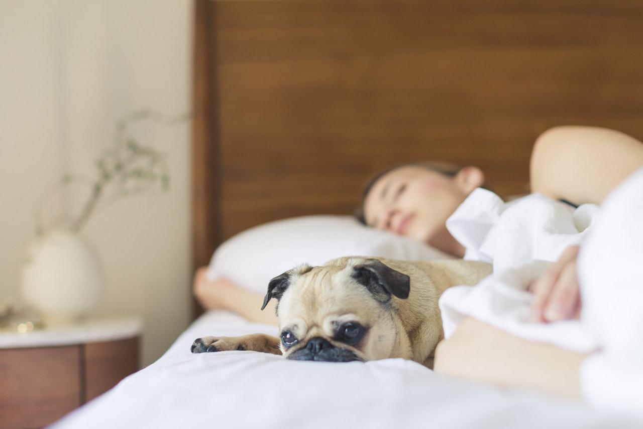 Mi kell hozzá, hogy nyugodtan aludjunk a hitelfelvétel után?